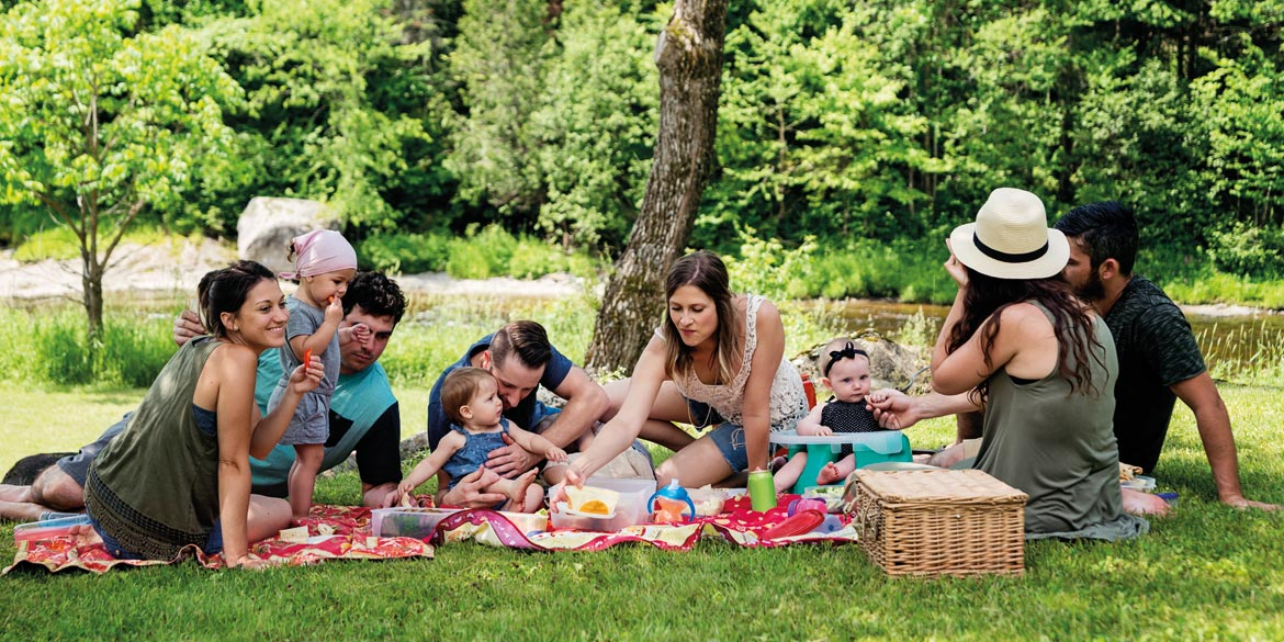 Picnic with the family
